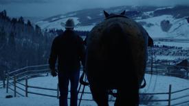 REI - Cowboy (2019)
