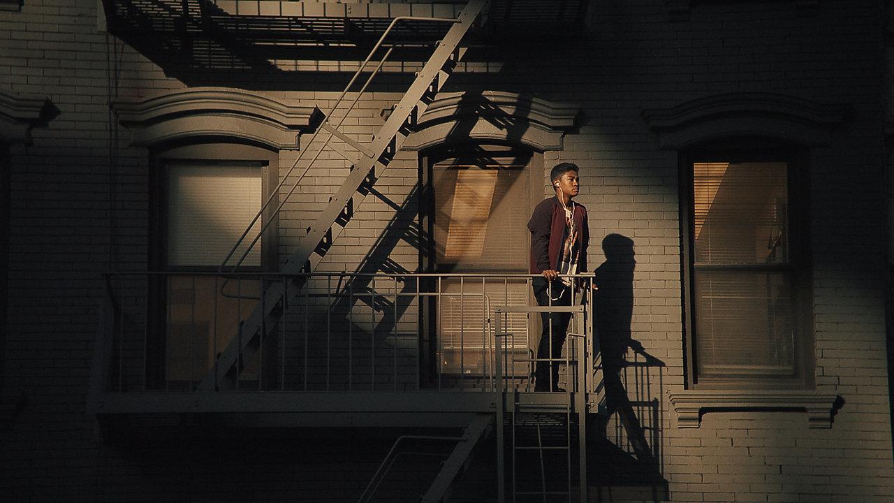 Adam Carboni Featured Cinematography Work