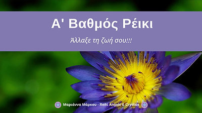 (04) 298 3985 2092 +76 209 1092 4095 info@mollysrestaurant.com