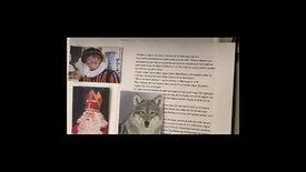 Sinterklaas en de geheime deur door Tvisha