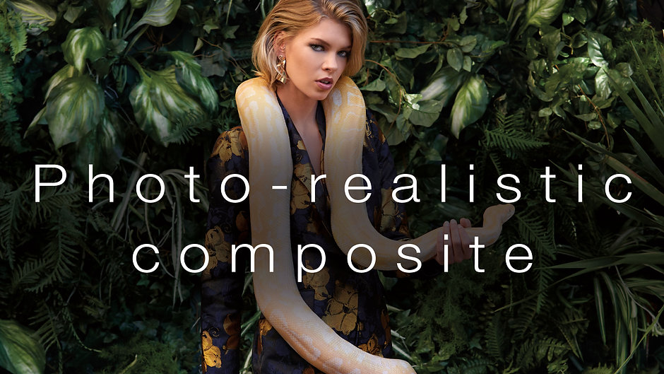 Retouching and Composites