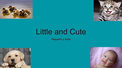 30/09/2021- Little and Cute