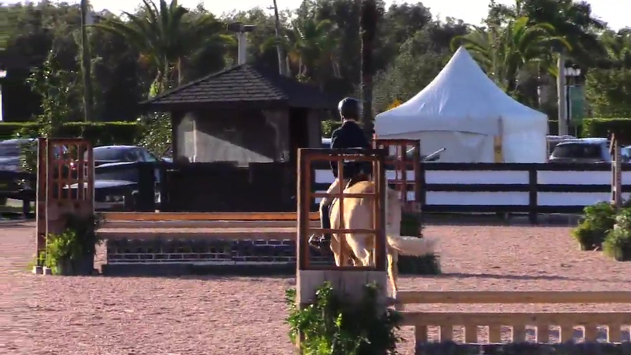 2019WEF5 1st Chic In Time 86 score