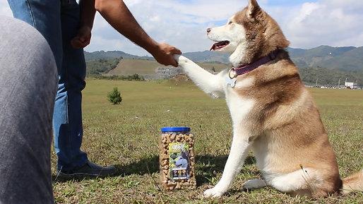 Mi pata por un Snack Wolf ¡Trato hecho!