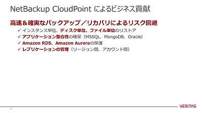 VTS_2020_Autumn_D1-2_Kijima_CloudPoint_20201111-1