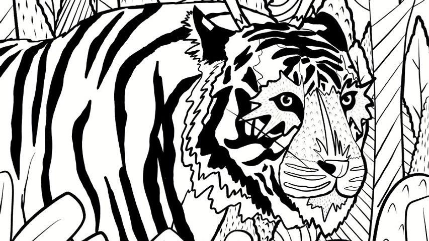 Forest tiger