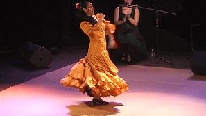 Mojacar Flamenco Bulerias
