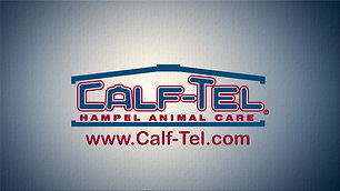 Calf-Tel Calf new product introduction
