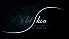 """OLD SKIN"" - 2016 World Guard"
