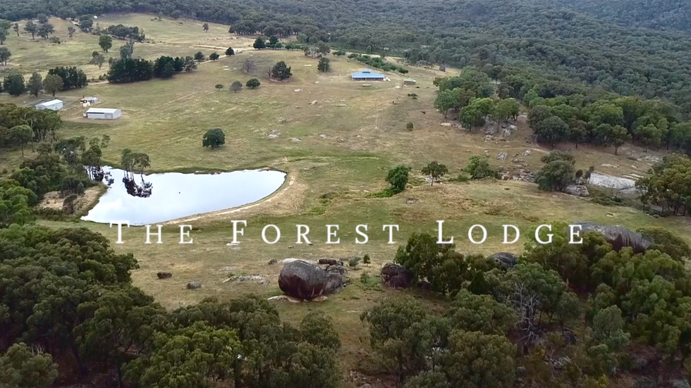 The Forrest Lodge