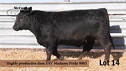 Lot 14 McConnell Altitude 854