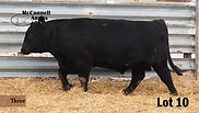 Lot 10 McConnell Rainmaster 8224