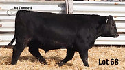 Lot 68 McConnell Cutting Edge 880