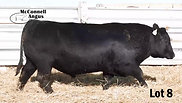 Lot 8 McConnell Rainmaster 8226