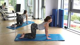 Rent Low Back Pain Class 12