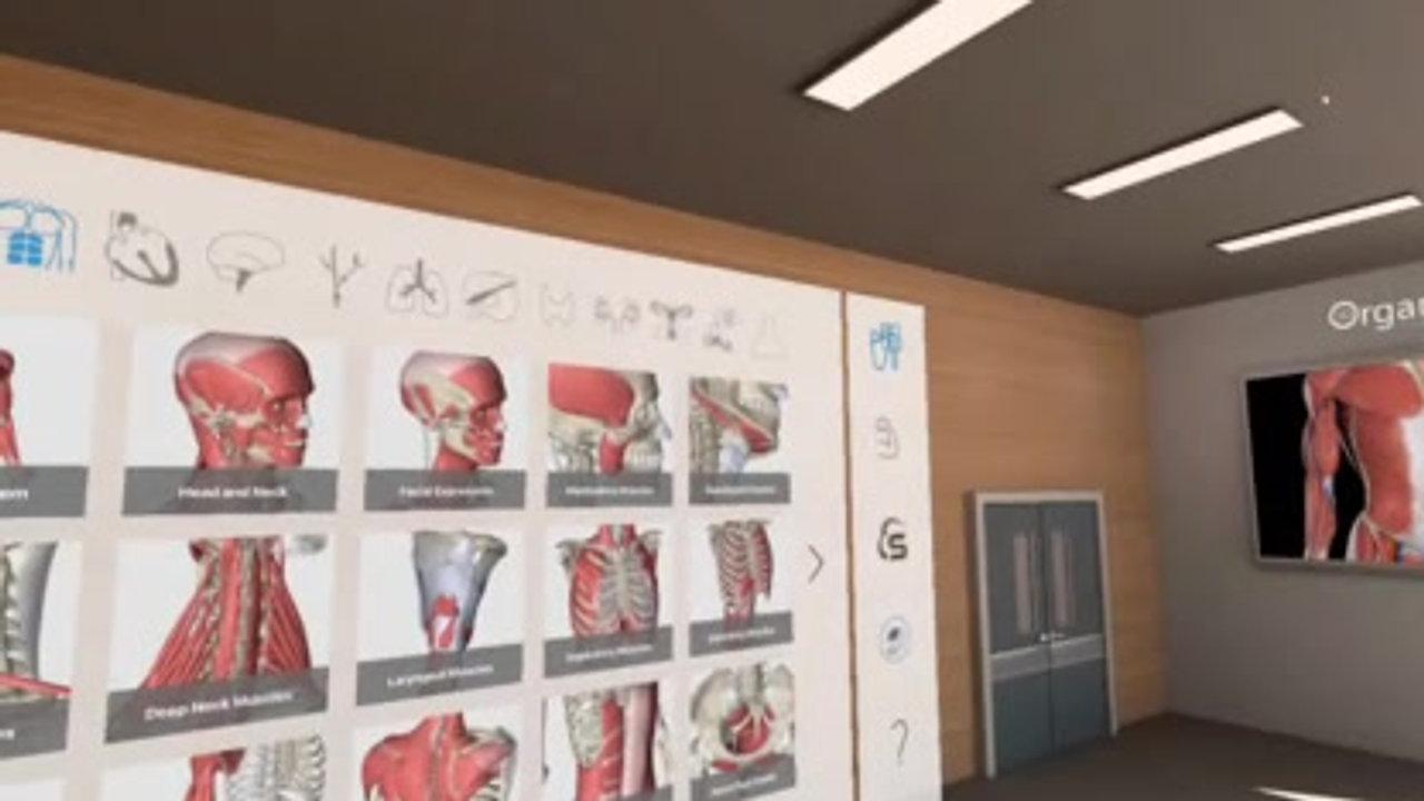 3D_Organon