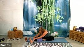 Sushumna Nadi Yin Yoga Practice with Dawn