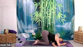 Full Body Yin Practice