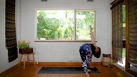 DVY Series 6.2 | Pitta Balancing | Patient Warrior