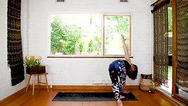 6.2 | Pitta Balancing | Patient Warrior