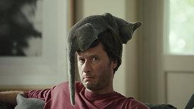 NETFLIX_CAT