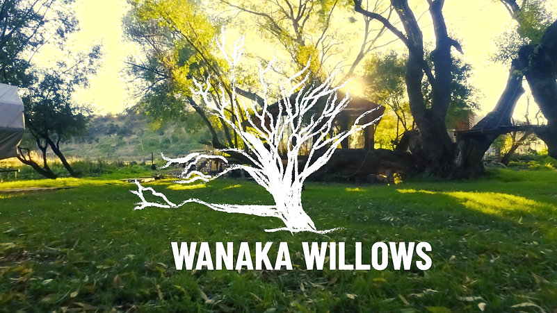 Welcome to Wanaka Willows Paradise