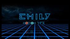 Emily's Banner
