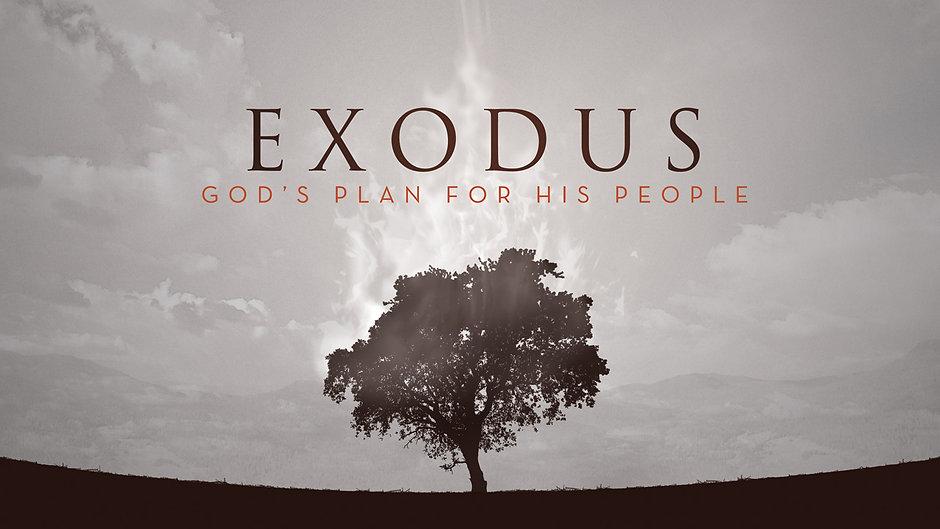 EXODUS SERIES
