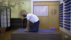 V2R   Vinyasa Yoga - Nível 2