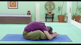 V14S | Hatha Yoga | Relaxar e Energizar