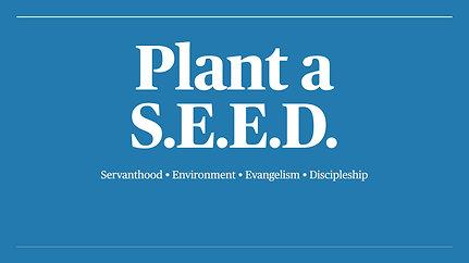 Plants S.E.E.D.s