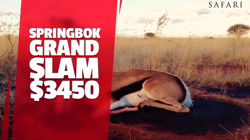 Springbok Grand Slam