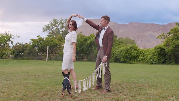 A Wedding With Your Dog