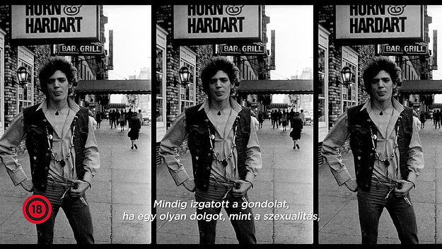 Mapplethorpe - Look at the Pictures