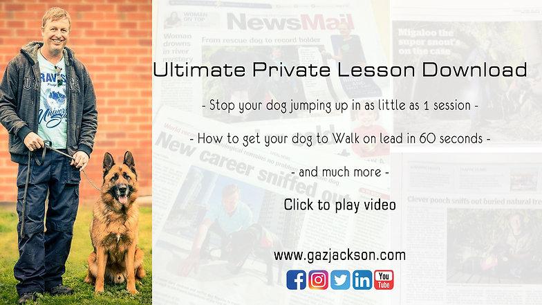 Ultimate Dog Training ONLINE PROGRAM
