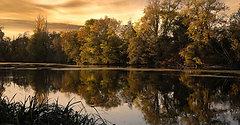 Le Loiret à St Hilaire