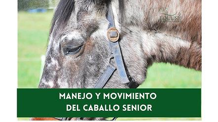 Caballo Senior