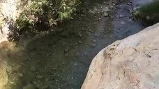 El Saltillo, Canillas de Aceituno