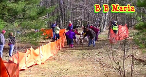 2015 Troutfest Dryland Derby Dog Rig Race