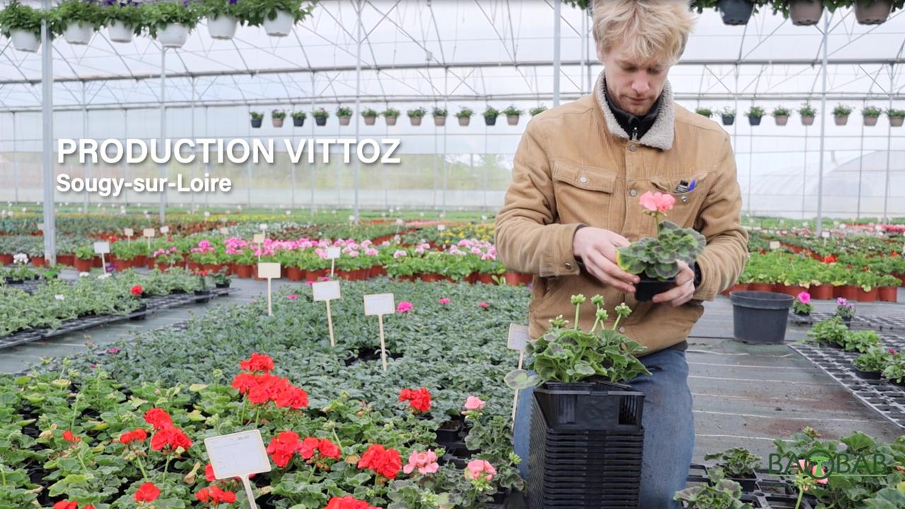 D'où viennent nos fleurs et légumes de saison ?