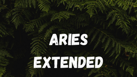 ARIES - DIFFICULT ROADS LEADS TO BEAUTIFUL DESTINATIONS [TIMELESS]