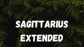 SAGITTARIUS - FINISHING STRONG [TIMELESS]