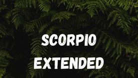 SCORPIO - BE CAREFUL WHO YOU CALL YOUR FRIEND [TIMELESS]