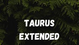 TAURUS - TRUST YOURSELF [TIMELESS]