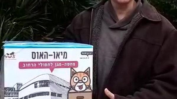 בונים בתי מחסה לחתולי הרחוב