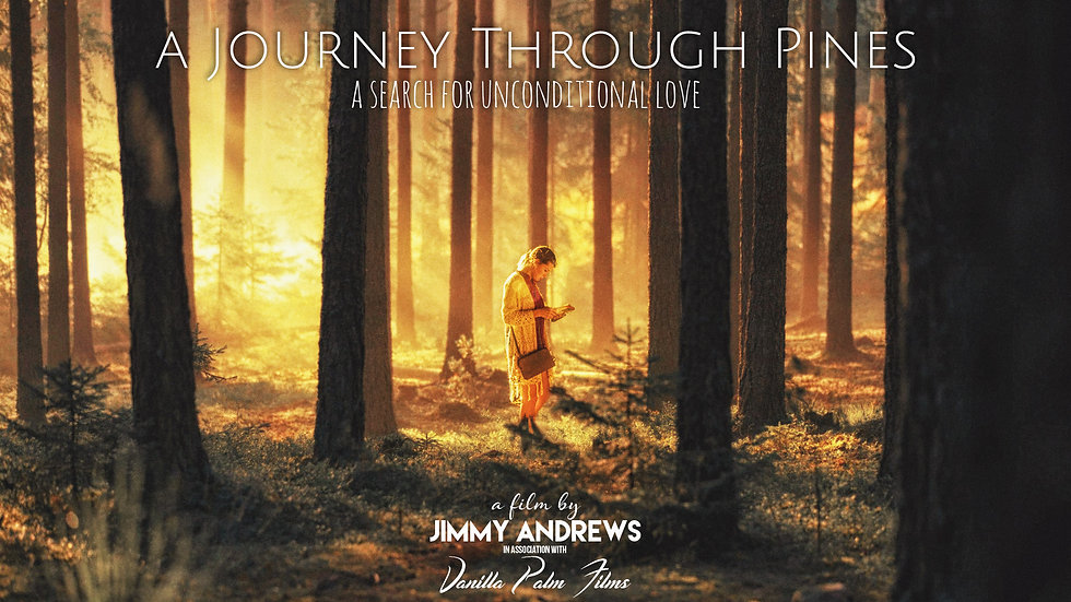 A Journey Through Pines