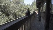 Rancho Tanuki