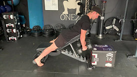 Incline dumbbell rows