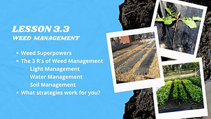 Lesson 3.3 Weed Management