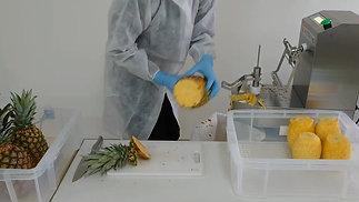KA-750 Pineapple Production